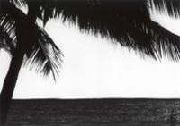 Hawaii_027s